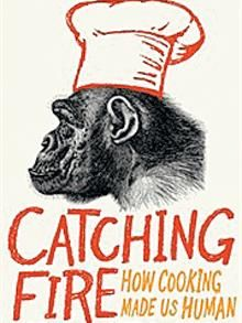 Cooking, Fire and Human Evolution