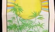 Jobs, Taxes and Crime: Keys to California's Pot Vote