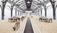 Deers of Perception